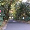 山手線徒歩一周!代々木-原宿編!ほぼ明治神宮内をお散歩しただけ・・・