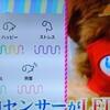 愛犬の気持ちがわかる5色の感情ゲージ「イヌパシー」