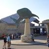 2016旅行記 沖縄編③ 美ら海水族館と海洋博公園