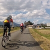 ロードバイクで木曽三川公園からいなべ市と湯ノ山へ。そして自然薯料理を食べてコスモス鑑賞してきました。