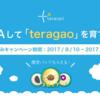 『Q&Aして「teragao」を育てよう!』を開始しました!