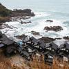 海の丘倶楽部 車座でのランチと和倉温泉 虹と海での宿泊【2017.11.20】