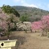 香川県 特別名勝 栗林公園