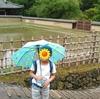 東大寺の見学会