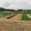 夏野菜の成長と収穫 ーTom家の畑編ー