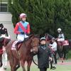 勝ったのは道営ローズジュレップ。武豊騎手は地方交流重賞で、今年初の着外。兵庫ジュニアグランプリ2016 観戦記