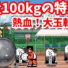 熱血!大玉転がし - [3]重量100kgの特別玉【攻略】にゃんこ大戦争