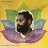 <Pitchfork Sunday Review和訳>Bennie Maupin: The Jewel in the Lotus