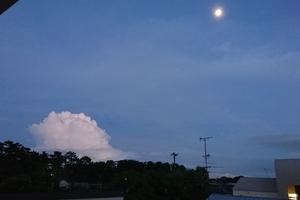 映画『 天空の城ラピュタ 』に似た雲を見ました