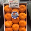 貴方はどこの蜜柑が好き?今、三ヶ日みかんが美味しすぎる〜!