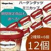 ウソでしょ!?アイスクリームの楽天商品~!ハーゲンダッツ