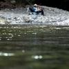 大阪滝畑ダムのBBQエリアで川遊び。川の中に入らないと撮れないという特別感のある写真って面白い。