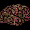 第122回 BrainとNOTEの仕組みの違いを解説します!