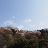 霊園風景 その103  「‥今頃の豊かさとは」