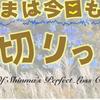 【運営報告】1月はプラス8911円でした&悪いニュース・・・