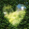 【素直な心になるために】素直な心を養っていくためのヒントが学べます。