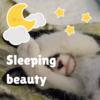 最高の睡眠を手に入れる!睡眠の質を向上させて、翌朝スッキリ!