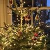 イギリスのクリスマスの飾り付けでふと思う