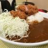 Tonkatsu Aoki no Curry IppeKoppe