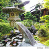 【奈良・大阪】日本庭園の池