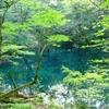 【日本酒】青森県のおすすめ地酒8選。お土産にも。