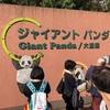 【子育て】上野動物園で香香に会ってきた