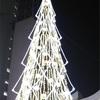 新梅田シティのクリスマスツリーを見てきた