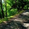 夏の活動記録 山を走る