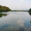 貴船池(福岡県福智)