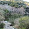 滝頭上池(愛知県田原)