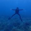 台湾北部のダイビングスポット 龍洞
