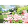 おすすめ)奥平 亜美衣さんの日めくりカレンダーで毎日がハッピーに!