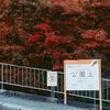秋の日帰り箱根写真旅