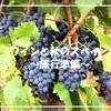 ワインと秋のスペイン旅行 ~観光・気候・交通・治安~