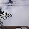 作曲工房 朝の天気 2018-11-04(日)くもり