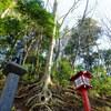 高尾山登山コース・1号路(表参道コース)