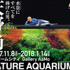 天野尚 NATURE AQUARIUM展