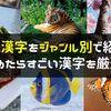 難読漢字クイズ130個!読めたらすごい漢字をジャンル別に一覧で出題!