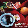 Notches - New Kinda Love (New Stock)