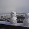 【登山】眉山~徳島に雪が降ったので登るしかない~