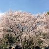 江戸の二大庭園の一つ【六義園】。側用人柳沢吉保とは?