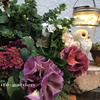 wreath&owl