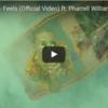 """Calvin Harris(カルヴィン・ハリス) - """"Feels""""のミュージック・ビデオを公開"""