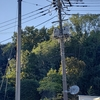 パワースポット巡り(805)~(809)六地蔵、つくれば山公園、百草八幡神社、松連寺詩碑、枡井西公園