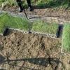 土曜日の午後は、1000本のネギの苗を定植!