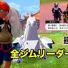 【ポケモン剣盾】鎧の孤島 クリア後にキバナ・マリィなどが登場します