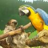 『自己責任』がテーマ?ほぼ何でも触れる札幌市内の動物園、『ノースサファリサッポロ』はスリルあって最高に面白かったです。ゲテモノフードも忘れず食べようね?