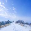 赤城 新雪踏みしめ鍋割山