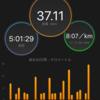 昨日のおひとり様マラニック~エア柴又試走&3カ月チャレンジ