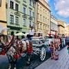 【ポーランド旅行】はじめてのポーランドで行くべき都市と見所は?ワルシャワ、クラクフ、グダニスク、ヴロツワフの観光名所をご紹介!